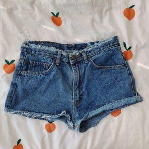 Urban Outfitters Renewal Denim Shorts